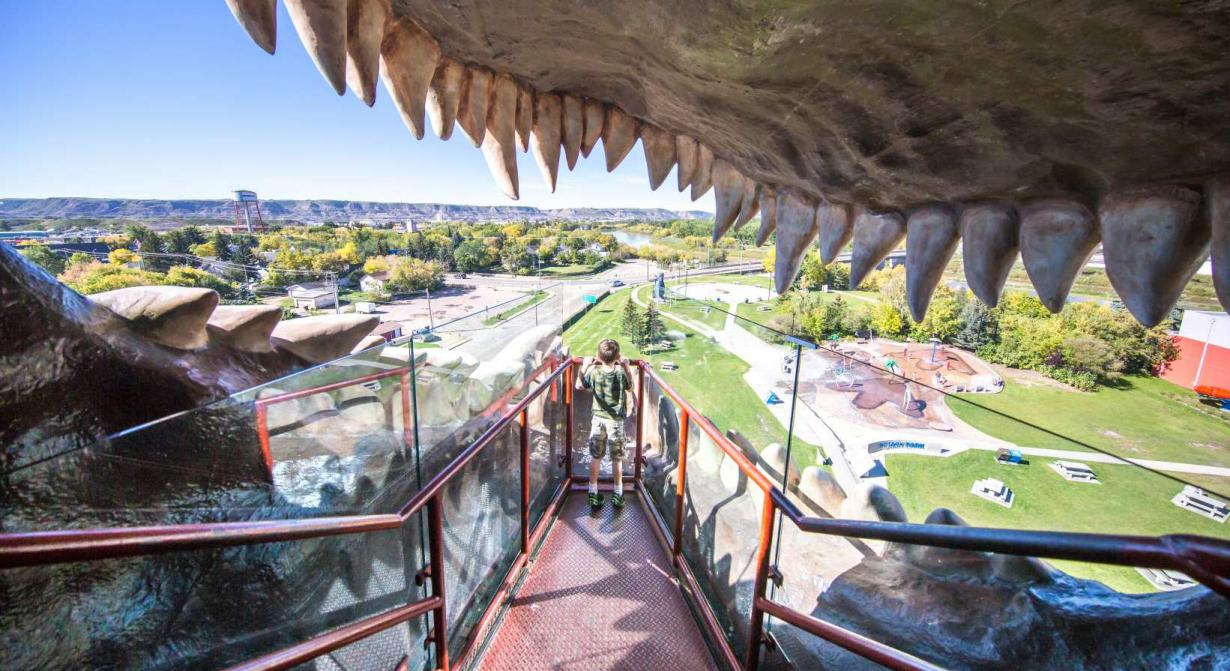 Amusement Parks Travel Drumheller