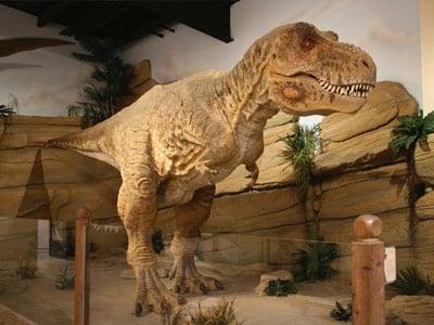 Fossil World Jurassic Store | Drumheller
